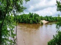 Choctawatchee Bluff : Geneva : Geneva County : Alabama