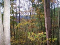 311 Acres Hunting, Recreational