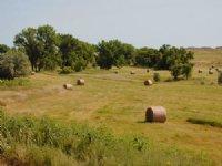 Two Creek Ranch