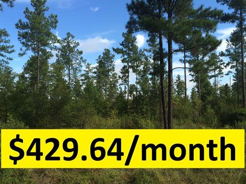 Ample Acreage & Owner Financed : Kite : Johnson County : Georgia