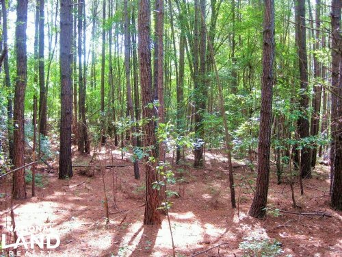 Lexington Residential Homesite : Lexington : South Carolina