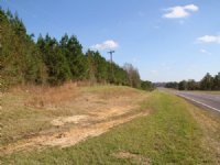 Benton Tract : White Hall : Lowndes County : Alabama