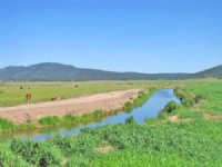 Drost Ranch