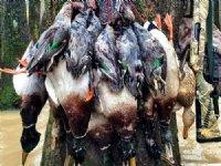 250 Acres Crp Ducks And Deer