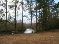 20 Acres, Plummer Creek : Yulee : Nassau County : Florida