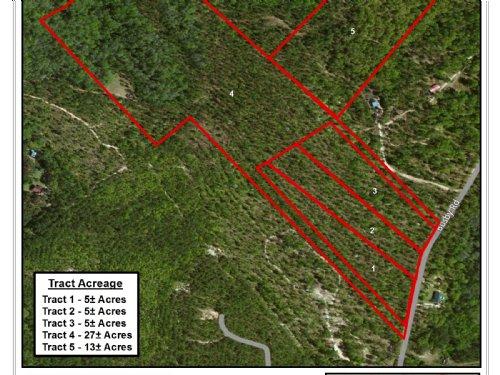 Glenns Branch Tract 5 : Statesboro : Bulloch County : Georgia