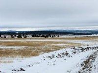 Tract 5 Hartland Ranches