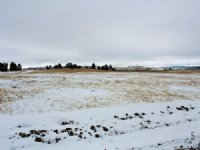 Tract 6 Hartlannd Ranches