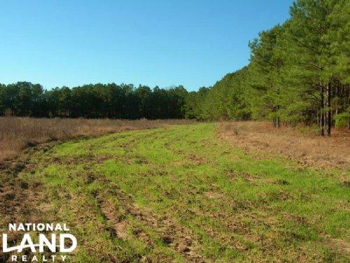 Recreational Farming Homesite : Maplesville : Chilton County : Alabama