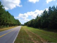 77 Ac Hunting Tract