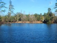 Reduced Timber & Wildlife Tract