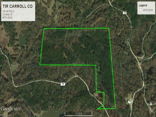 Timberland Hunting Tract Carrollton : Carrollton : Carroll County : Mississippi