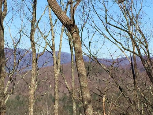 Blue Mountain View : Ellijay : Gilmer County : Georgia