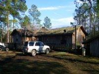 Pine Log 631a : Ebro : Washington County : Florida