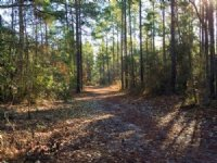 5 Acres Boontown Rd.
