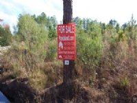 11 Acres - Lot 14 - Tall Pines S/d
