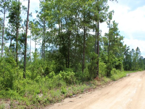 10.24 Acres - Lot 14 - Pop Bell Rd : Hilliard : Nassau County : Florida