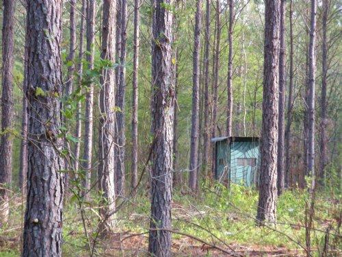 Ohatchee : Ohatchee : Calhoun County : Alabama