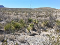Remote 20 Acres : Study Butte : Brewster County : Texas