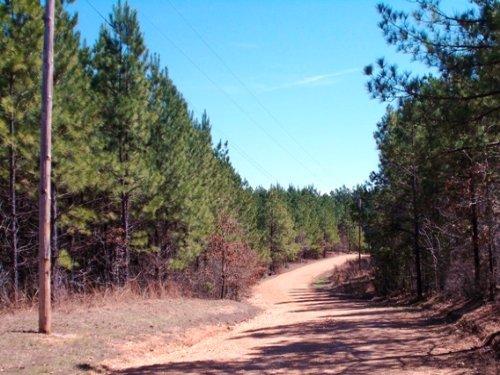 Hwy 229 : Leola : Grant County : Arkansas