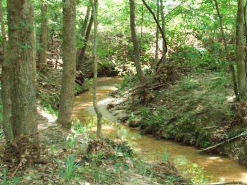 Cherokee Rd : Chester : Tyler County : Texas