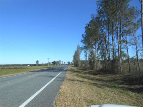 80.01 Acres On Paved Road : Live Oak : Suwannee County : Florida