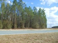 115.14 Acres On Paved Road : O Brien : Suwannee County : Florida