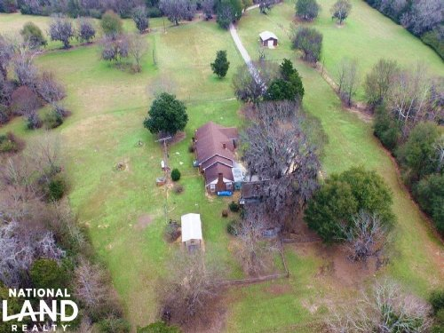 Sardis Hunting & Timber Investment : Sardis : Dallas County : Alabama