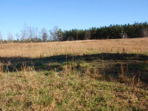 48 Acres In Cowpens : Cowpens : Spartanburg County : South Carolina