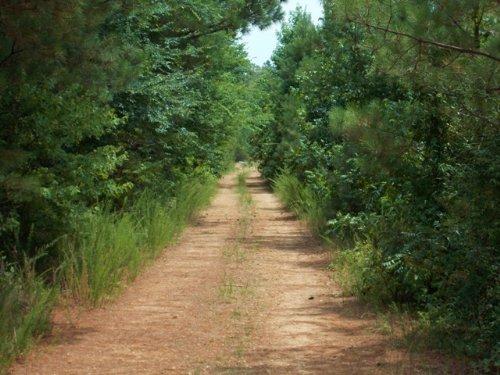 Enhanced Hunting Tract : Arkadelphia : Clark County : Arkansas
