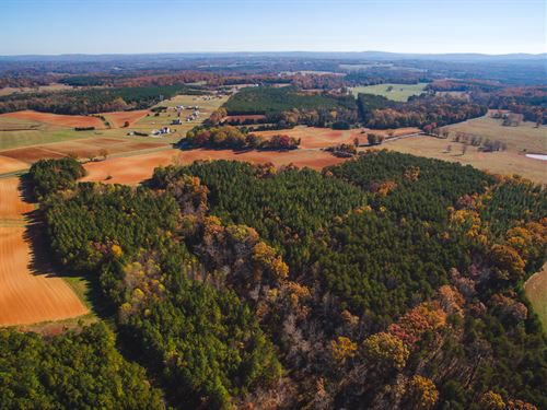 88+ Acres In Quiet Location : Chatham : Pittsylvania County : Virginia