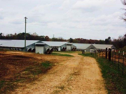 6 House Broiler Farm Lena, Ms Leake : Lena : Leake County : Mississippi