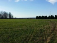 23 Subdividable Acres In Pauline : Pauline : Spartanburg County : South Carolina