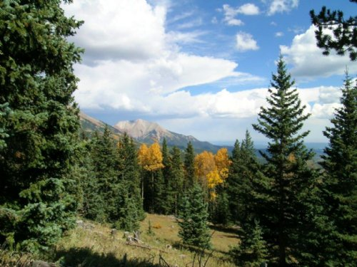 Lot 4 Timber Ridge At Cordova Pass : Cuchara : Las Animas County : Colorado