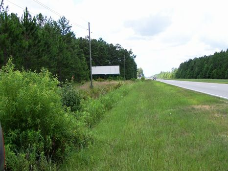 Lawton Tract - 185 Acres : Hardeeville : Jasper County : South Carolina
