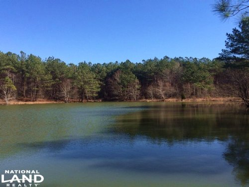 Winfield Recreation & Timber Land : Winfield : Fayette County : Alabama