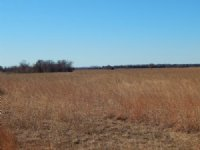 160 +/- Acres Auction