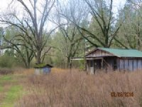 Rural Home Site And Timber : Cleveland : Blount County : Alabama