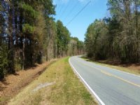 Acreage With Many Possibilities : Brunswick : Glynn County : Georgia