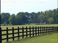 65.00 Acres Cattle Farm Land