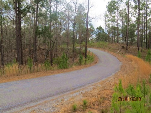 Great Rural Home Site Near The Lake : Rockford : Coosa County : Alabama