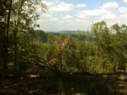 60 M/L Acres : Bunch : Cherokee County : Oklahoma