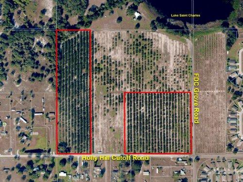 Holly Hill Cutoff Road Acreage : Davenport : Polk County : Florida