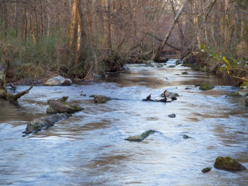 Unique River Property Near Town : Leeds : Jefferson County : Alabama