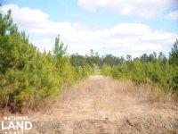 Clarkton Multipurpose Land