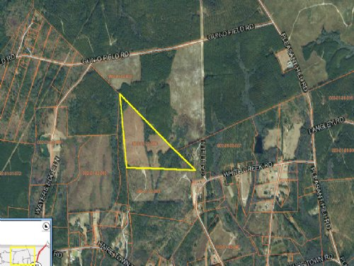 56,500 - Off Haire Town Rd, Wallace : Wallace : Marlboro County : South Carolina