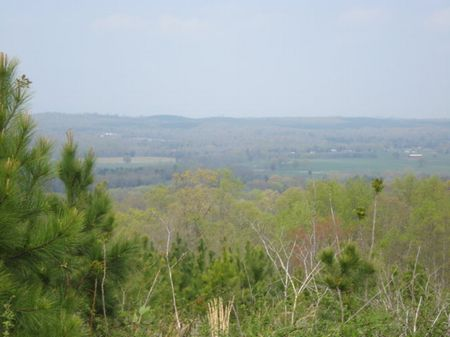 5- 50 Acre Tracts Great Potential : Decatur : Meigs County : Tennessee