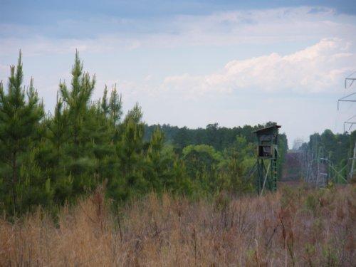 Sumter Forest : Carlisle : Union County : South Carolina