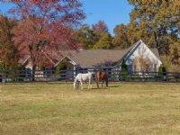 10 Acre Horse Farm, 4,400 Sqft Home