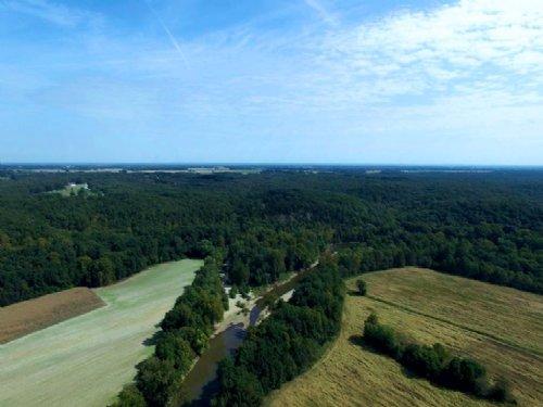 139 Acres; Shepard Farm Road : Truxton : Lincoln County : Missouri